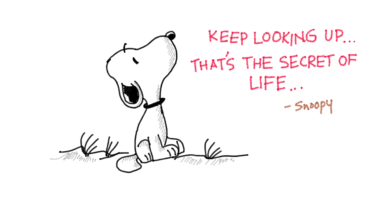 Keep looking up. That's the secret of life.
